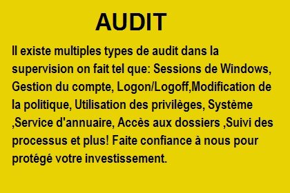 Supervision de multiples types de audit chez Iko